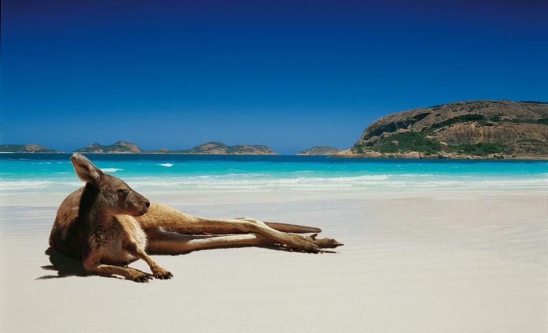 avustralya vize 2 - Avustralya